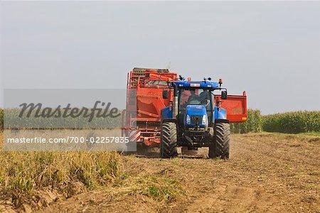 Matériel agricole de récolte de pommes de terre, Pays-Bas