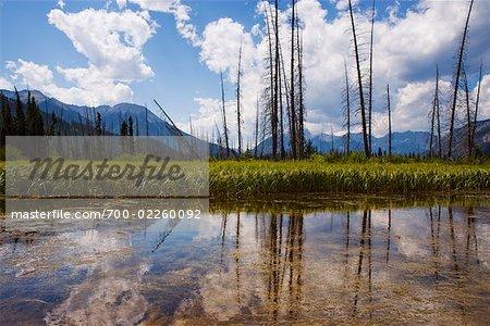 Le Parc National Banff, Alberta, Canada