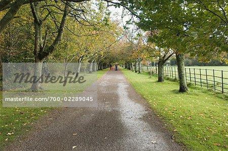 Weg durch den Killarney National Park, County Kerry, Irland