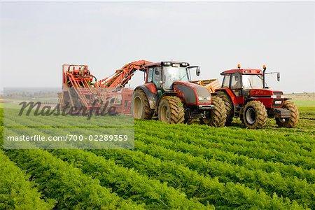 Tracteurs de ferme