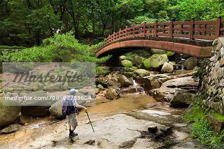 Hiker by Bridge over Creek in Park, Seoul, South Korea