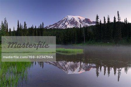 Mount Rainier en matinée, Mount Rainier National Park, comté de Pierce, des cascades, Washingtong State, USA