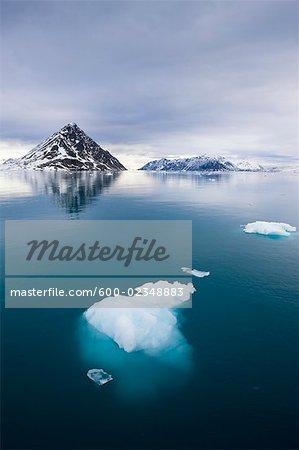 Eisberge, die schwimmende durch Tinayra Bukta, Norwegen