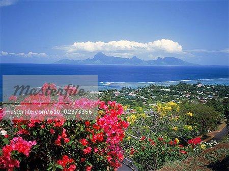 Polynésie française, île de l'île de Tahiti, Punaauia et Moorea island à l'arrière