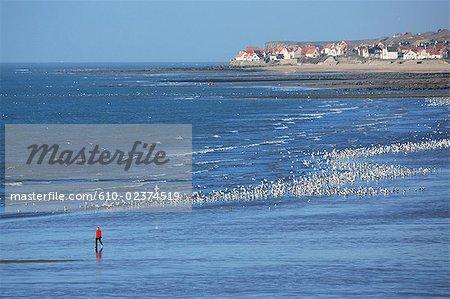 France, Pas-de-Calais, Opal Coast, beach of Pointe aux Oies and Audresselles burg at back