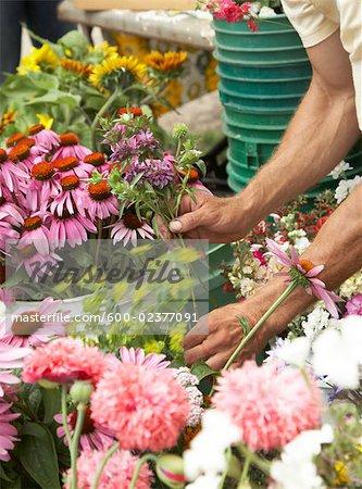 Fleurs vente du vendeur au marché de l'agriculteur biologique