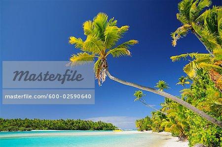 Plage, One Foot Island, Aitutaki Lagoon, Aitutaki, îles Cook