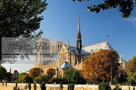 Cathédrale Notre Dame, Ile de la cité, Paris, France