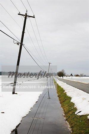 Lignes électriques, la vallée du Fraser, en Colombie-Britannique, Canada