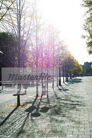 Sweden, Stockholm, pedestrians walking along tree-lined path