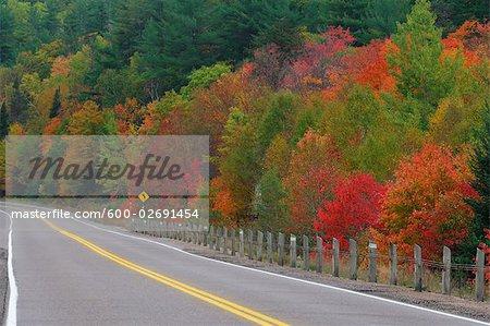 Route à travers le Parc Provincial Algonquin à l'automne, Ontario, Canada