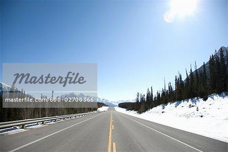 David Thompson Highway, Banff National Park, Canadian Rockies, Alberta, Canada
