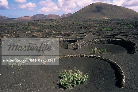 Culture de la vigne, de la région de La Geria, Lanzarote, îles Canaries, Espagne, Europe