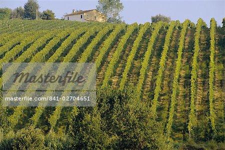 Landscape, St. Omero, Abruzzo, Italy, Europe