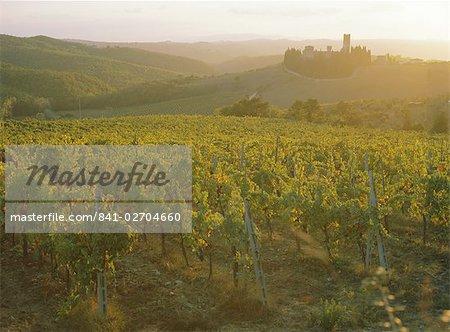 Vineyards and ancient monastery, Badia a Passignano, Greve, Chianti Classico, Tuscany, Italy, Europe