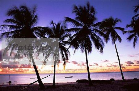 Palmiers en silhouette à l'aube, Jambiani, Zanzibar, Tanzanie, Afrique de l'est, Afrique
