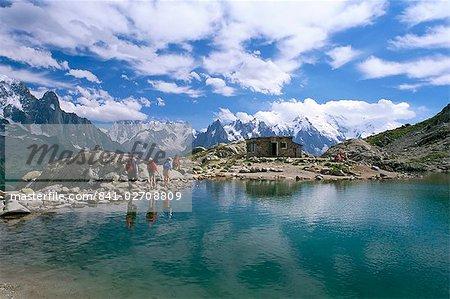 Lac Blanc, Chamonix, Haute-Savoie, Rhône-Alpes, France, Europe