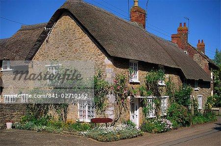 Chaumières avec des roses sur les murs à Burton Bradstock dans le Dorset, Angleterre, Royaume-Uni, Europe