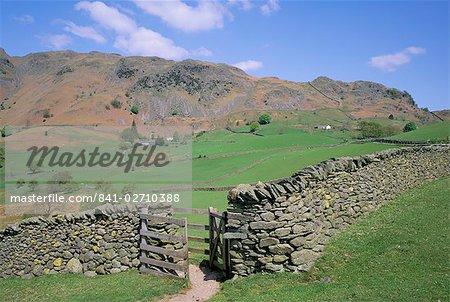 Mur de Pierre, champs et Lingmoor Fell, peu Langdale, Lake District, Cumbria, Angleterre, Royaume-Uni, Europe