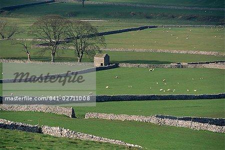 Murs en pierre, Marko et Wharfedale, Yorkshire, Angleterre, Royaume-Uni, Europe