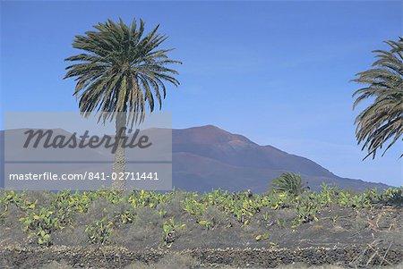 Fire Mountain, Lanzarote, Canary Islands, Atlantic, Spain, Europe