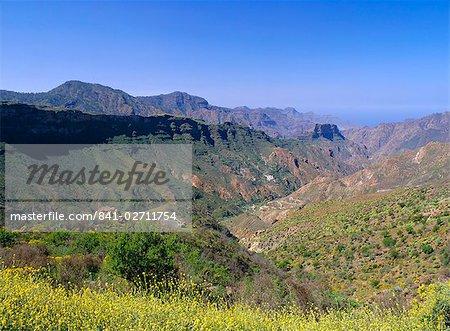 Barranco del Chorillo, Toque Bentaiga, Tejeda, Gran Canaria, Iles Canaries, Espagne