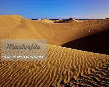 Sand dunes and sea beyond, Maspalomas, Gran Canaria, Canary Islands, Spain, Europe