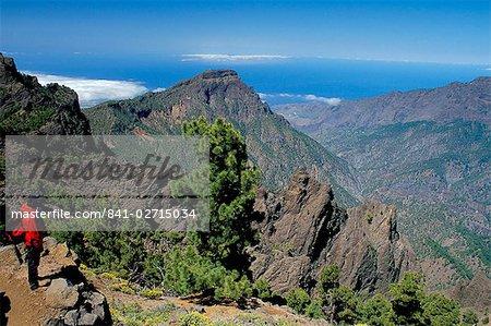 Trekker looking at surrounding landscape, Parque Nacional de la Caldera de Taburiente, La Palma, Canary Islands, Spain, Atlantic, Europe