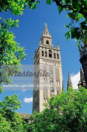 The Giralda, the Moorish minaret and observatory, Seville, Andalucia (Andalusia), Spain, Europe
