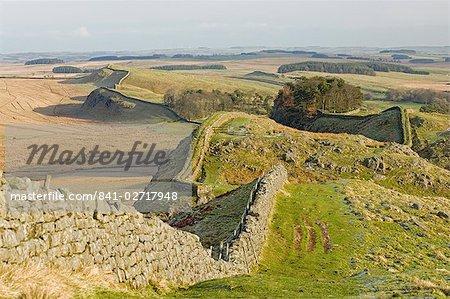 À l'affichage de Holbank Crags tracé du mur romain passé Housesteads bois est à Sewingshields Crag, mur d'Hadrien, patrimoine mondial de l'UNESCO, Northumbria (Northumberland), Angleterre, Royaume-Uni, Europe