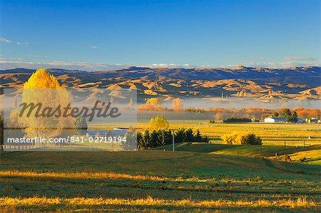 Terres agricoles, Alexandra, Central Otago, île du Sud, Nouvelle-Zélande, Pacifique