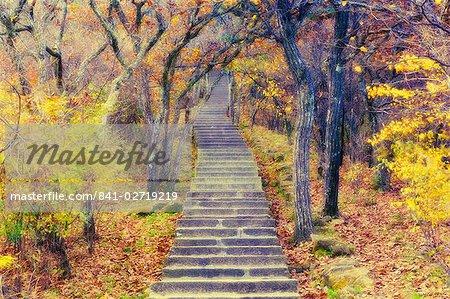 Sentier à travers la forêt de montagne, Huang Shan (montagne jaune), patrimoine mondial de l'UNESCO, la Province d'Anhui, Chine, Asie