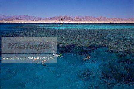 Parc National de Nabaq, Charm El-Cheikh (Sharm el-Sheikh), Egypte, Afrique du Nord, Afrique