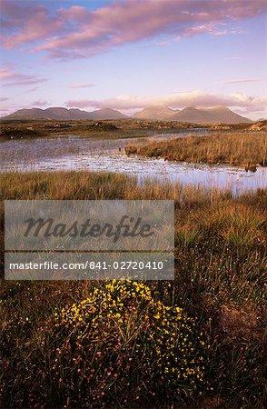 Ballynahinch Lake et les douze broches, près de Clifden, Connemara, comté de Galway, Connacht, République d'Irlande (Eire), Europe