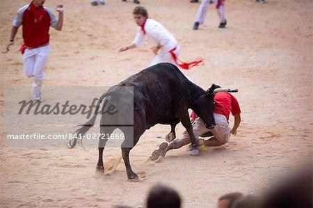 Bull fighting, San Fermin festival, Plaza de Toros, Pampelune, Navarre, Espagne, Europe