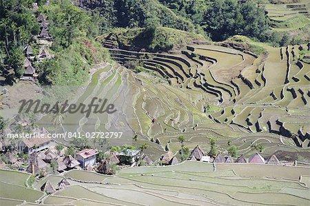Amphithéâtre spectaculaire de rizières en terrasses autour de la montagne province village de Batad, région du Nord de l'île de Luzon, aux Philippines, l'Asie du sud-est, Asie