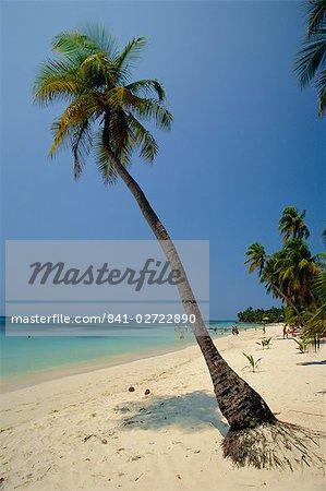 West Bay, Roatan, la plus grande des îles de la baie, au Honduras, Caraïbes, Amérique centrale