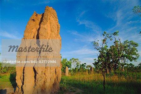 Termite « cathédrale », de l'Arnhem Highway, près de la Mary River Crossing entre Darwin et Kakadu au « Top End », Northern Territory, Australie