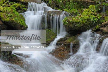 Ruisseau dans la forêt, Spessart, Bavière, Allemagne