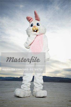 Personne portant un costume de lapin