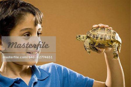 Junge hält lächelnd Schildkröte
