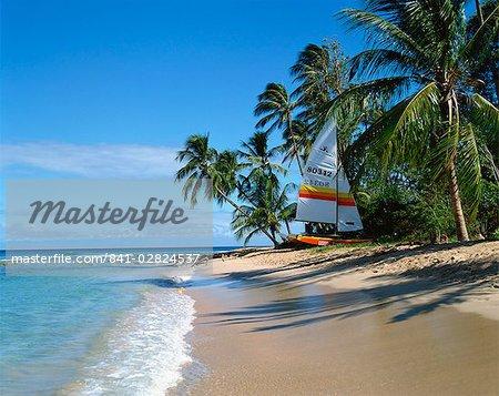 Catamaran on beach, Barbados, West Indies, Caribbean, Central America