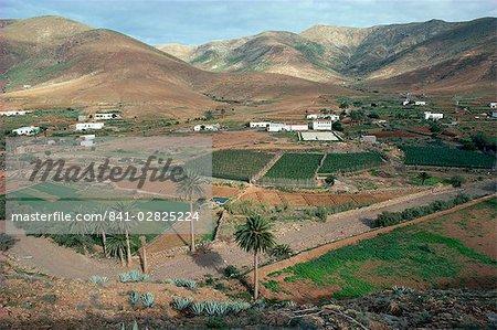 Paysage près de Toto, Furteventura, Iles Canaries, Espagne, océan Atlantique, l'Europe