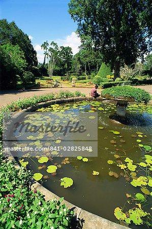 Jardins botaniques, Peradeniya, Kandy, Sri Lanka, Asie