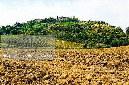 Castelnuovo Abate, Province de Sienne, Toscane, Italie