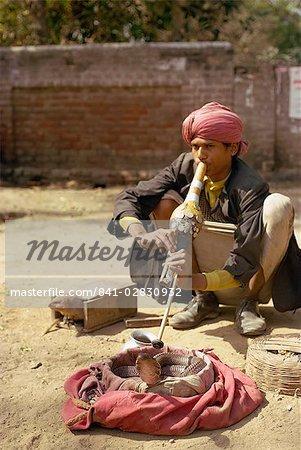 Snake charmer, Delhi, India, Asia