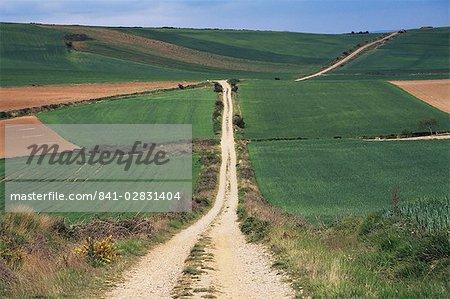 Grain fields between Najera and Azofra, La Rioja, Spain, Europe