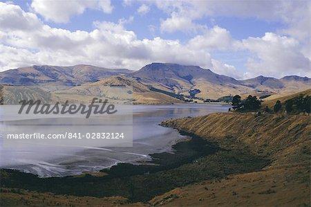 Tête de la baie, Lyttelton Harbour, péninsule de Banks, Canterbury, île du Sud, Nouvelle-Zélande, Pacifique