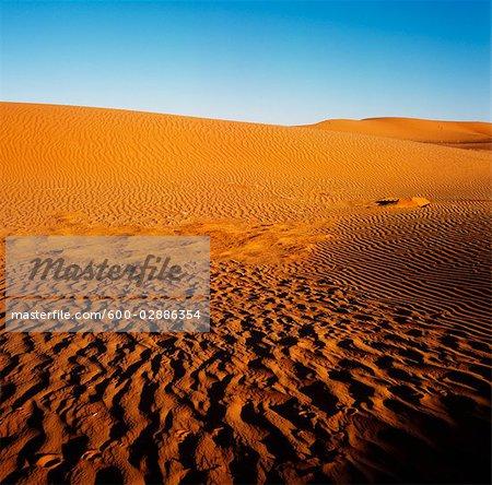Sand Dunes, Simpson Desert, Australia