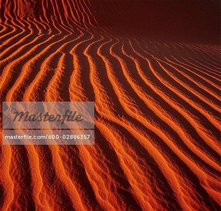 Dunes de sable, désert de Simpson en Australie
